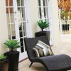 Outdoor Lounge with Plants
